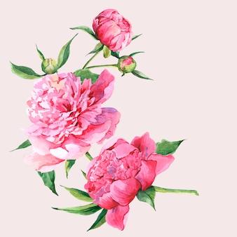 Carte de souhaits vintage rose pivoines aquarelle