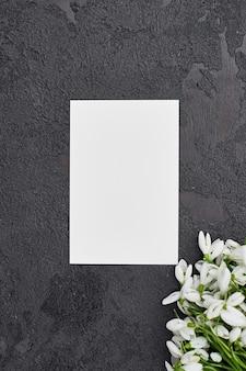 Carte de voeux avec perce-neige sur fond gris foncé