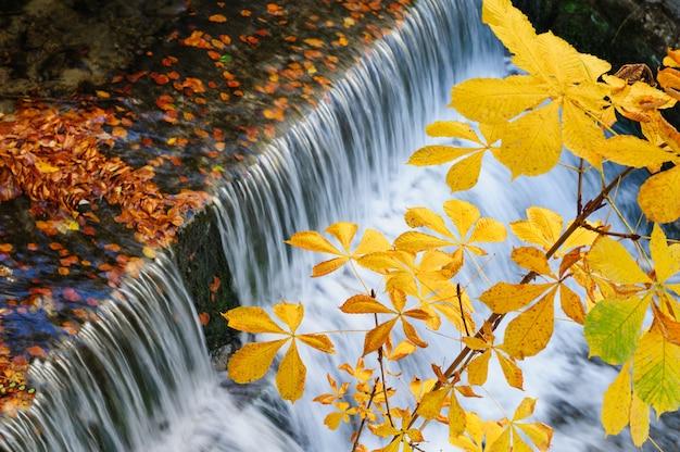 Cascade en automne