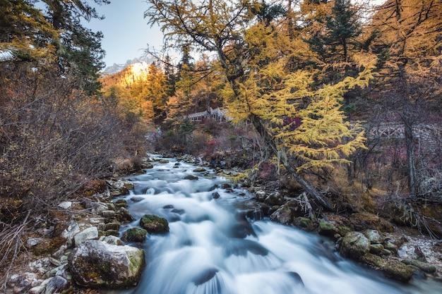 Cascade colorée dans la forêt d'automne à yading
