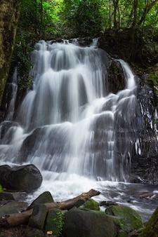 Cascade dans la forêt tropicale, parc national de ton nga chang