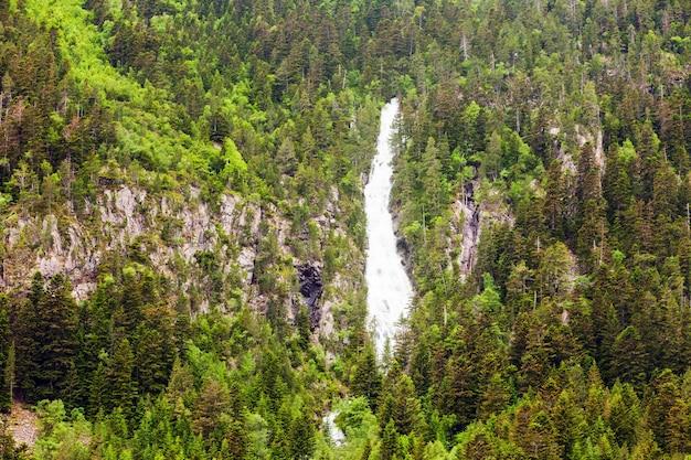 Cascade dans les forêts de montagne des pyrénées