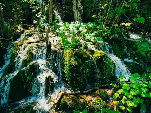 Cascade dans le parc national des lacs de plitvice croatie waterfal