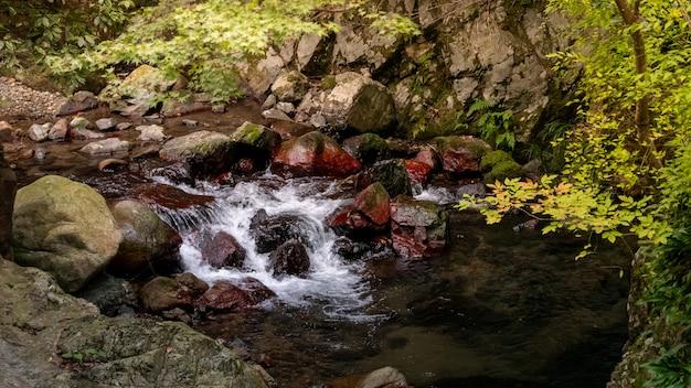 Cascade du parc minoh. osaka, japon