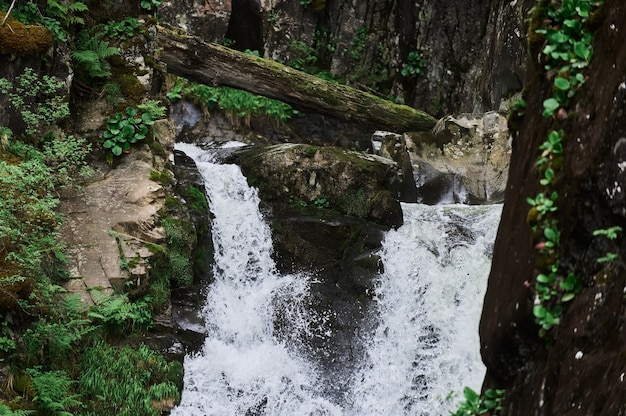 Cascade d'estyube au lac teletskoye dans les montagnes de l'altaï