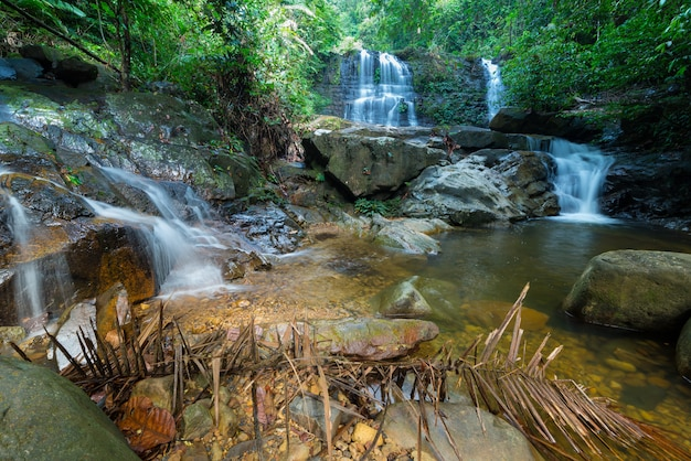 Cascade de la forêt tropicale de bornéo