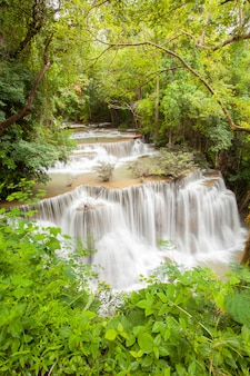 Cascade de la forêt tropicale