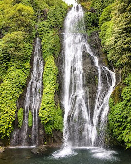 Cascade haute de jungle dans la forêt tropicale humide avec rocher à bali, en indonésie.