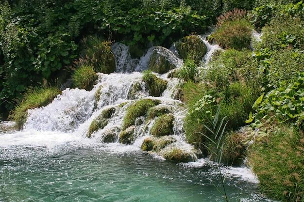 Cascade, lacs de plitvice, croatie, europe. étangs et chutes dans la végétation verte