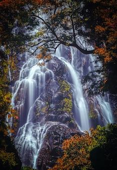 Cascade de sunantha avec arbre d'automne dans la province de nakhon si thammarat, thaïlande.