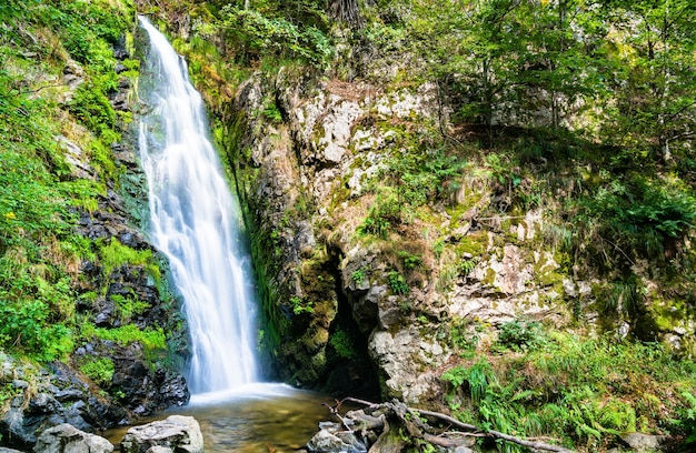 Cascade de todtnau dans les montagnes de la forêt-noire, allemagne