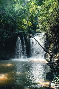 Cascade de voyage dans une forêt tropicale pendant la journée