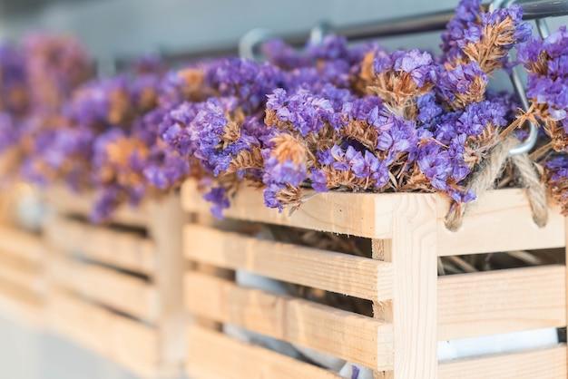 Caspia for filler flowers