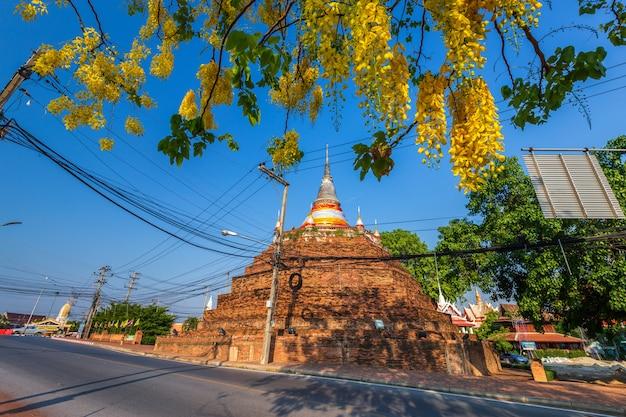 Cassia fistula au parc de phra chedi luang dans le temple