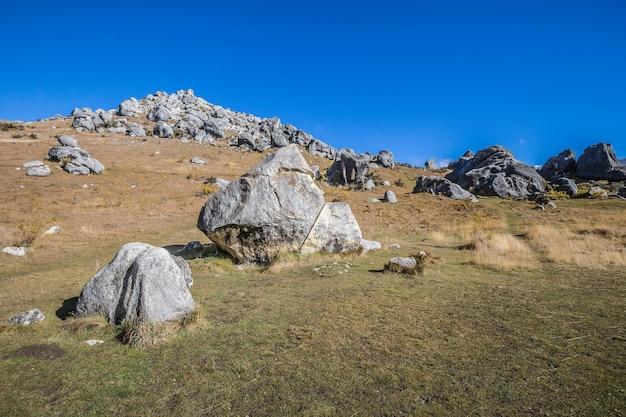 Castle hill nouvelle-zélande