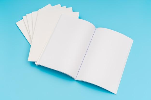 Le catalogue en blanc, les magazines, le livre se moquent sur fond bleu. .