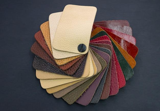 Catalogue de fans avec des échantillons de cuir de couleur