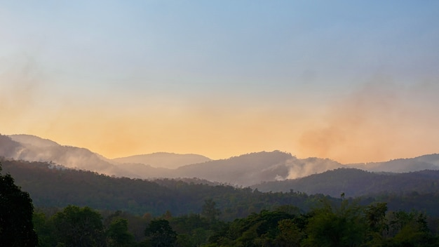 La catastrophe des incendies de forêt brûle les forêts sur les montagnes.