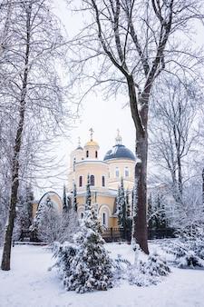 Cathédrale pierre et paul en hiver dans le parc