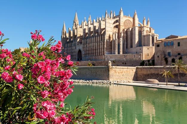 La cathédrale de santa maria de palma, également la seu, est une cathédrale gothique catholique romaine située à palma, majorque, espagne.