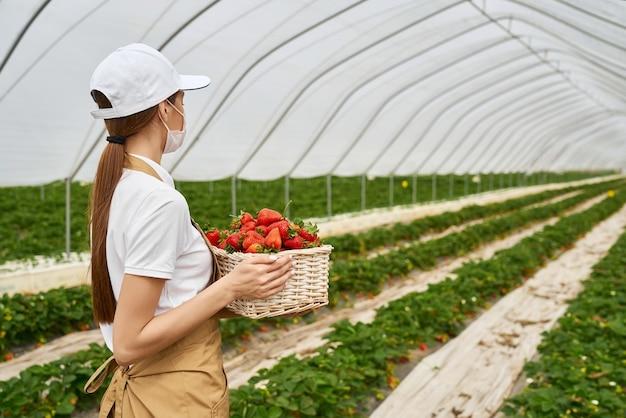 Caucasian woman in mask holding basket avec des fraises