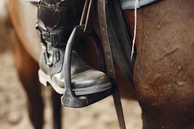 Le cavalier s'entraîne avec le cheval