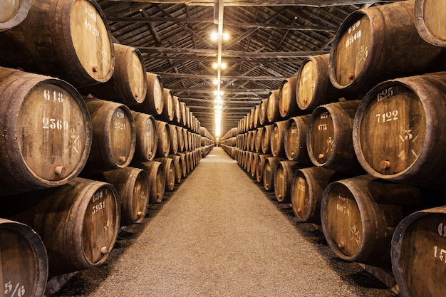 Cave à vin, porto
