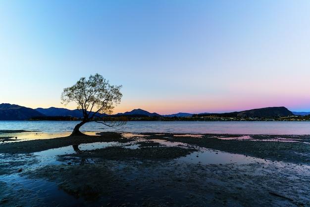Le célèbre arbre solitaire du lac wanaka est situé au pied du parc national du mont aspiring, un site du patrimoine mondial, au crépuscule, wanaka, île du sud de la nouvelle-zélande