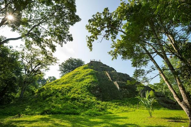 Célèbres anciens temples mayas dans le parc national de tikal, guatemala, amérique centrale
