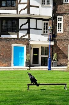 Célèbres Corbeaux De La Tour Blanche à Londres Uk Photo Premium