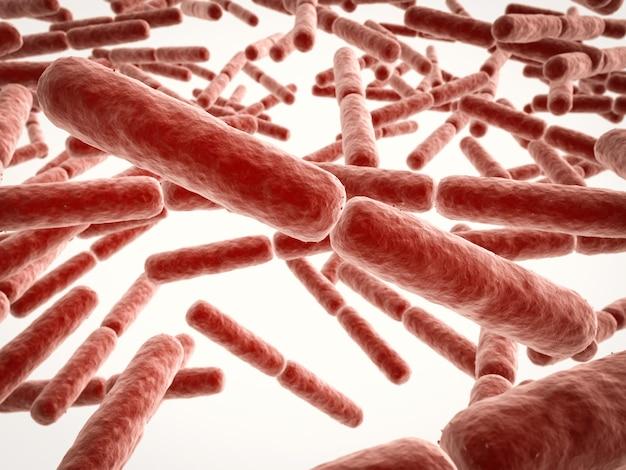 Cellules bactériennes en forme de bâton de rendu 3d