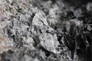 Les cendres du papier brûlé