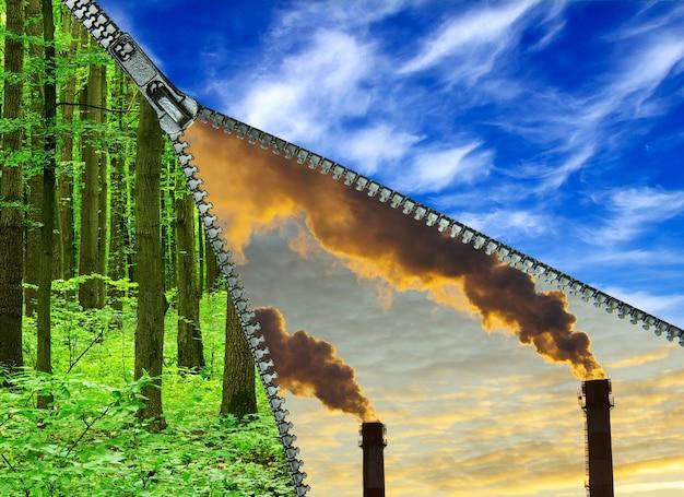 Centrale électrique avec fumée dans la forêt verte