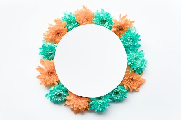 Cercle sur les asters colorés
