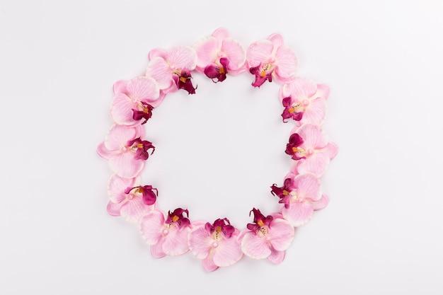 Cercle d'orchidées sur blanc