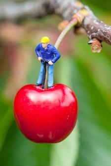 Cerise et travailleurs sur un cerisier