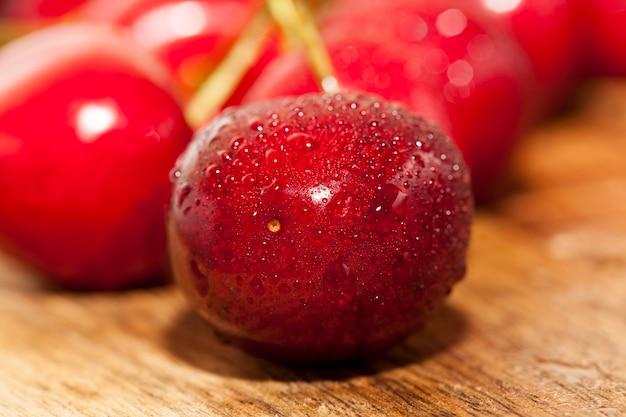 Les cerises fraîches humides sont comestibles, les cerises douces récoltées dans des gouttelettes d'eau, de délicieuses cerises douces couvertes de gouttelettes d'eau