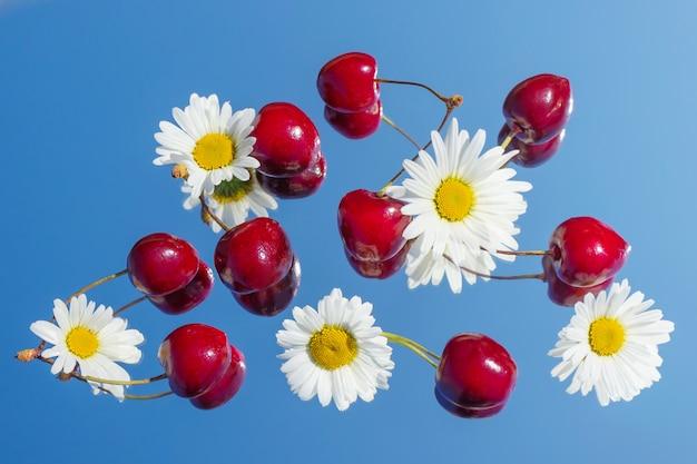 Des cerises mûres et des fleurs de marguerite sont sur le miroir, qui reflète le ciel.