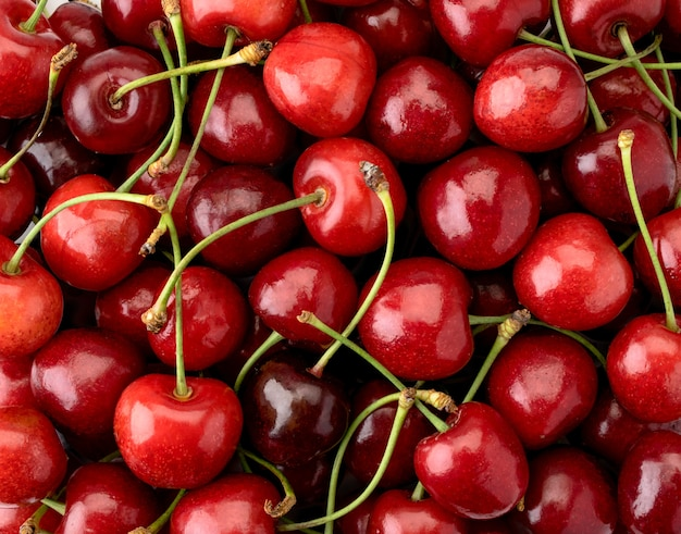 Cerises rouges mûres