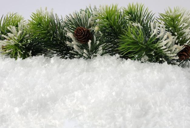 Un certain nombre de branches de pin avec des cônes dans la neige