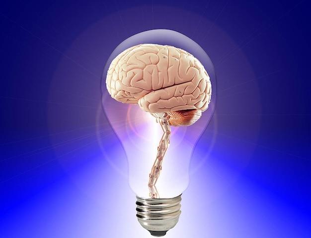 Cerveau humain pense
