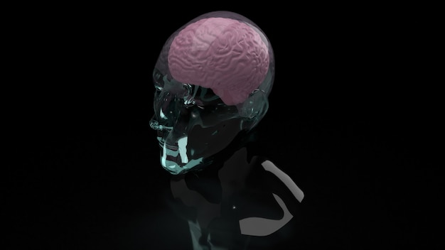 Le cerveau à l'intérieur de la tête de cristal pour l'éducation ou le rendu 3d de contenu sci