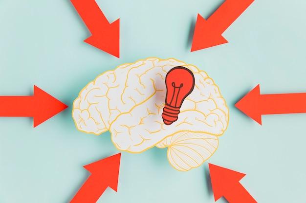 Cerveau de papier avec des flèches pointant
