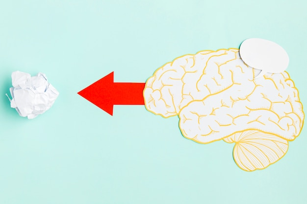 Cerveau papper avec flèche