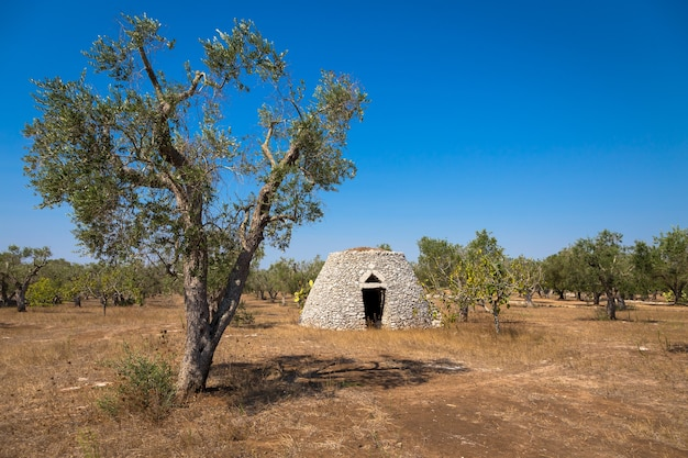 Cet entrepôt traditionnel est nommé furnieddhu en dialecte local. toute la structure en pierre, utilisée pour réparer les outils agricoles dans le pays