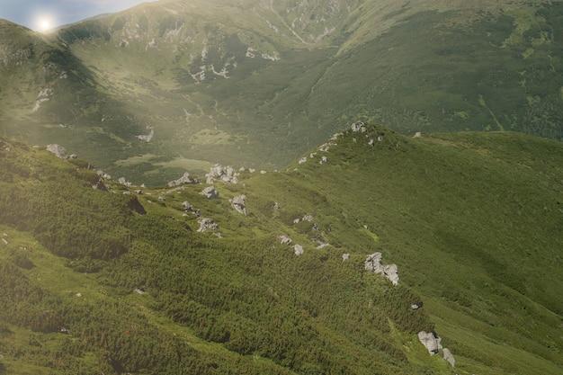 Chaîne de montagnes des carpates au matin d'été