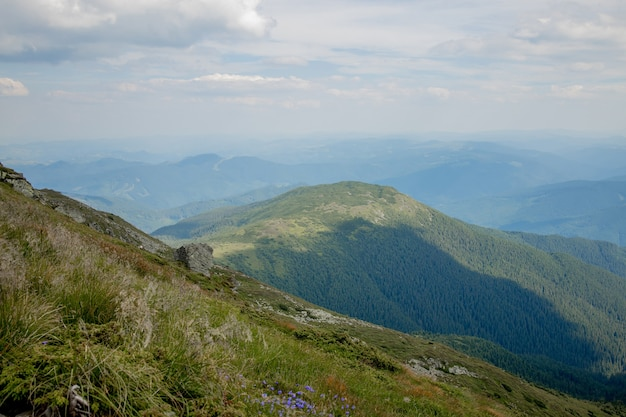 Chaîne de montagnes des carpates le matin d'été