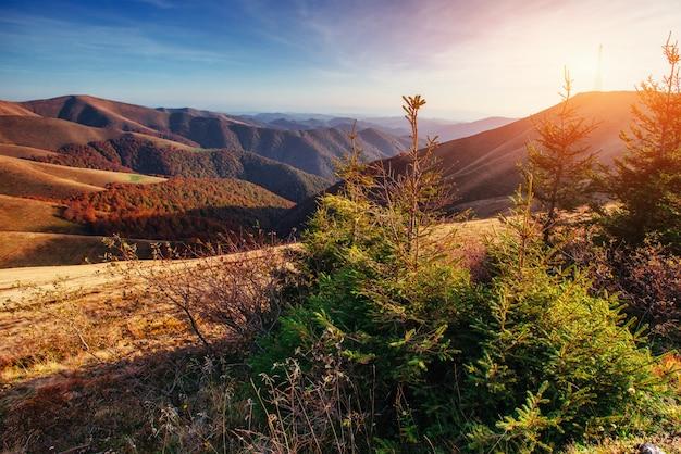 Chaîne de montagnes dans les carpates à l'automne.