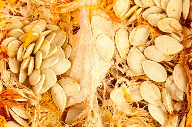 Chair de potiron aux graines crues