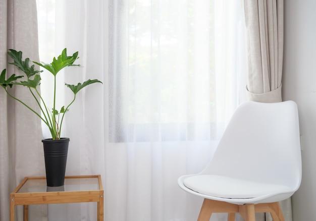 Chaise blanche moderne et selloum philodendron situé dans un intérieur de salon blanc avec fond de rideau pastel doux